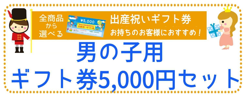 ギフト券5,000円で選ぶ 【男の子用】おすすめ交換商品