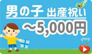出産祝い男の子 予算5,000円以下