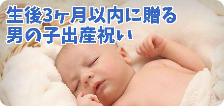 3ヶ月以内に贈る男の子出産祝いセット