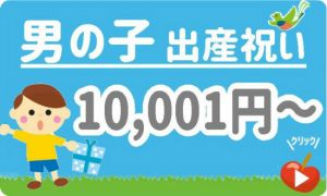 出産祝い男の子 予算10,001円以上