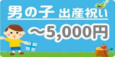男の子出産祝い5千円以下の商品はこちら