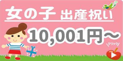 出産祝い女の子 予算1万円以上