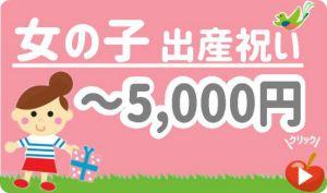 出産祝い女の子 予算5,000円以下