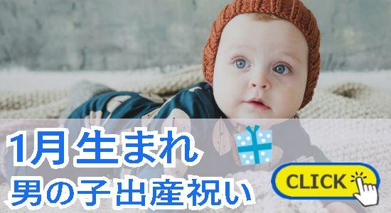 1月生まれ 男の子出産祝い
