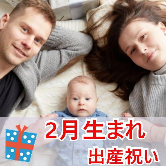 2月生まれに贈る出産祝いセット