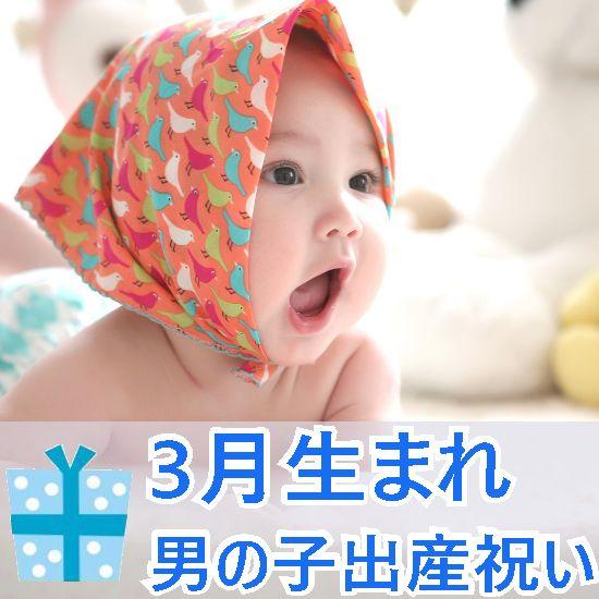 3月生まれの男の子へ贈る出産祝いギフト