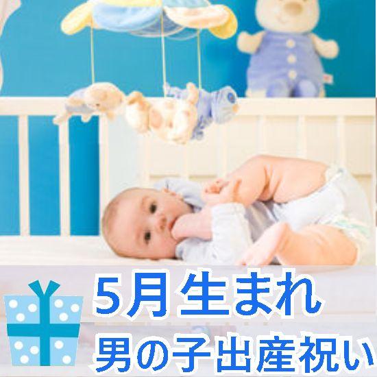 5月生まれの男の子へ贈る出産祝い