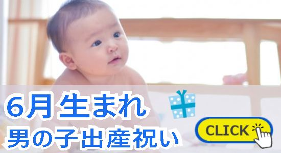 6月生まれ 男の子出産祝い
