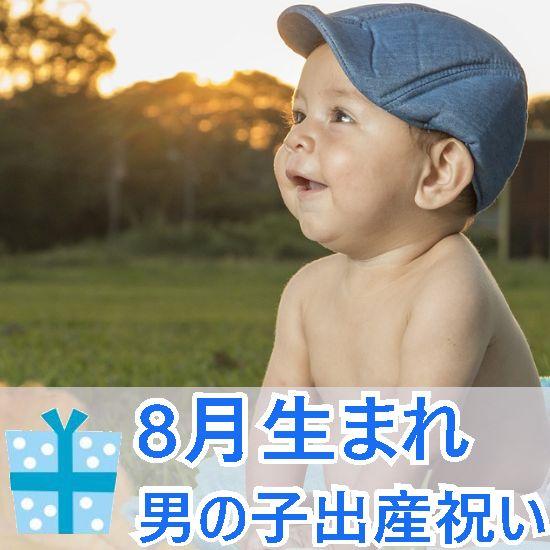 8月生まれの男の子へ贈る出産祝い