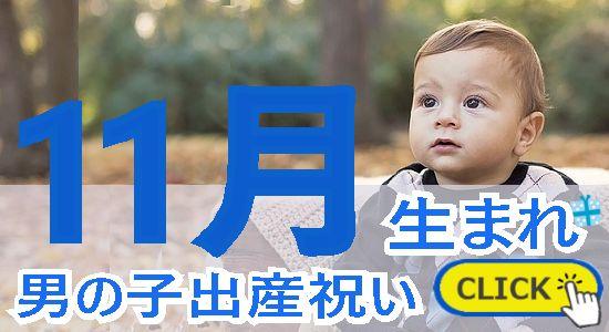 11月生まれ 男の子出産祝い