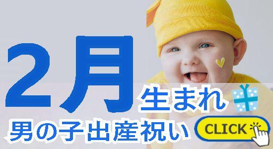 2月生まれ 男の子出産祝い