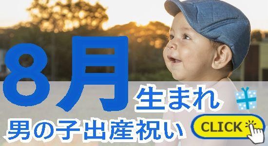 8月生まれ 男の子出産祝い