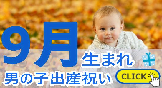 9月生まれ 男の子出産祝い