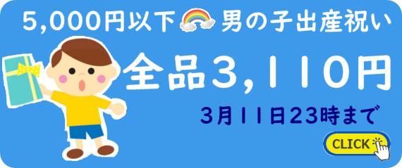 5,000円以下の男の子出産祝い全品3,110円