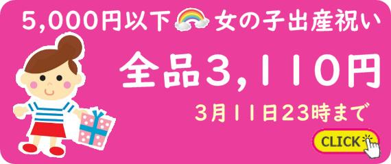 女の子出産祝い全品3,110円