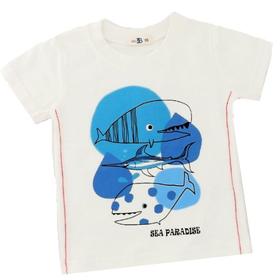 Kids+B カジュアルTシャツ(クジラ) サイズ80(12~18ヶ月)